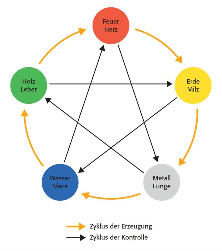 """Abbildung """"Die Zyklen der Fünf Elemente"""""""