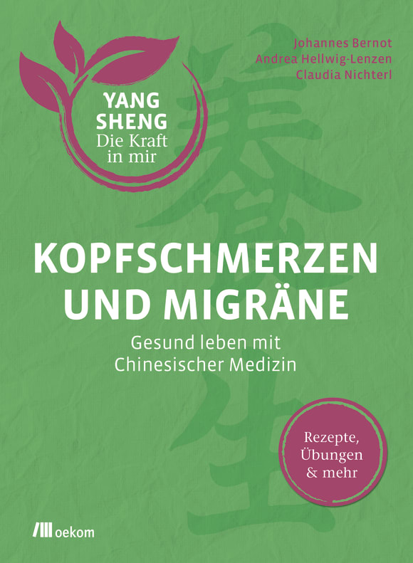 Buchcover Kopfschmerzen und Migräne